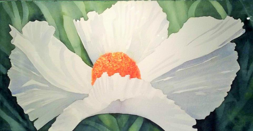 White Flower, Dorie